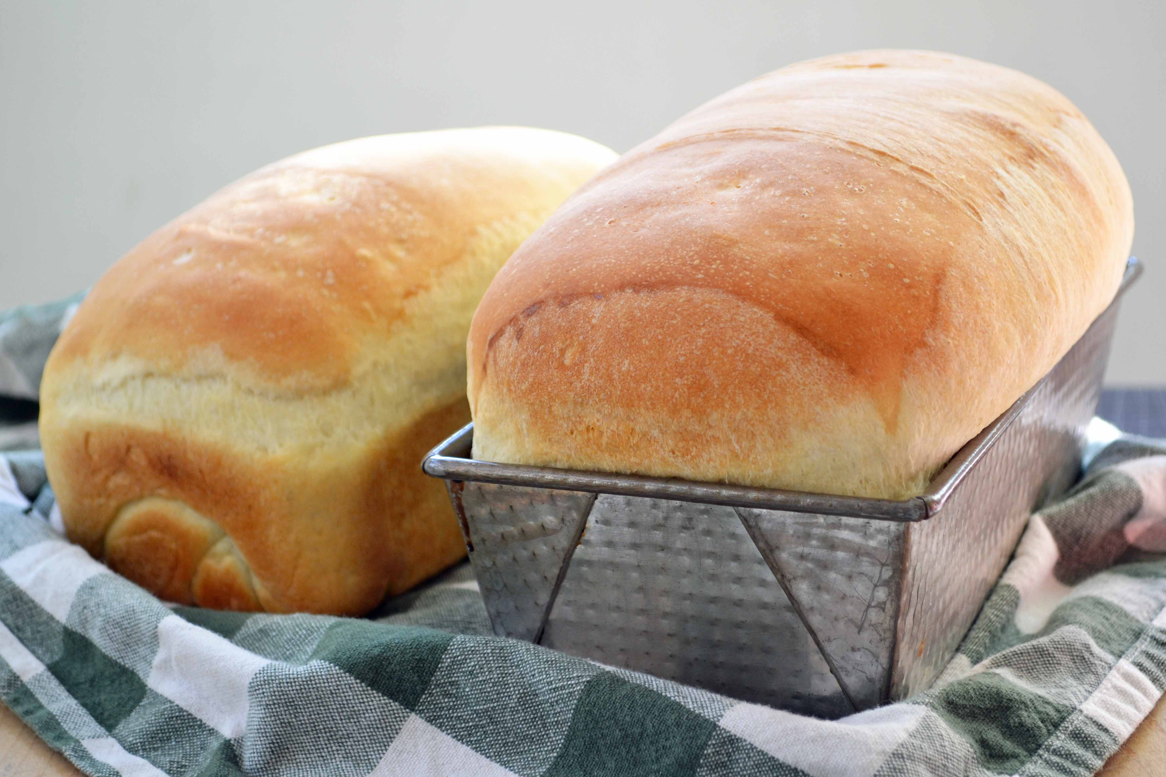 PKD Recipes » Breads